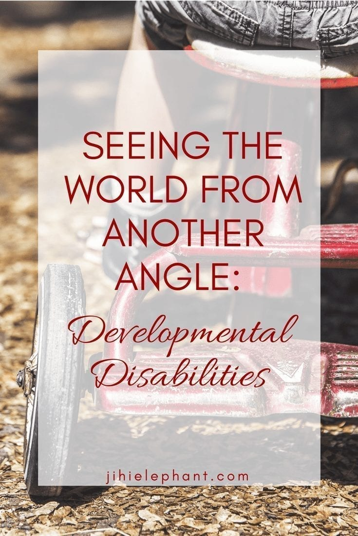 Seeing the World from Another Angle: Developmental Disabilities