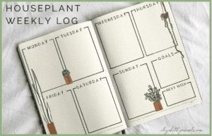 Are you a huge fan of indoor plants and watercolor artwork? This weekly log includes hand-painted water artwork and designs. Spread throughout the layout are various types of houseplants in various types of pots. The remainder of the spread is left blank for you to fill in but includes grid squares for each day of the week as well as 'Goals' and 'Next Week.' These bullet-journal-inspired downloads can be printed off and added to any planner or journal. Instantly download the PDF of these designs once you purchase the listing. You will get one download to use immediately!